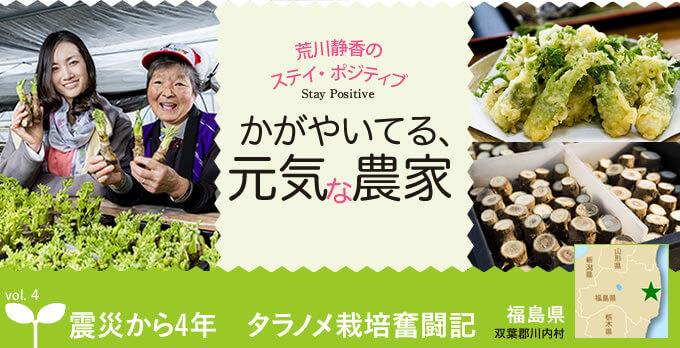 震災から4年 タラノメ栽培奮闘記|vol.4