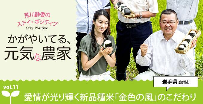 愛情が光り輝く新品種米「金色の風」のこだわり――かがやいてる、元気な農家