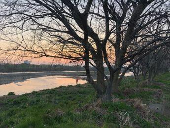 西部氏の遺体が発見された多摩川の現場