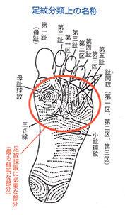 知られざる足紋の世界