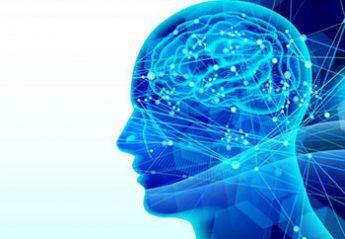 「自律神経」の鍛え方