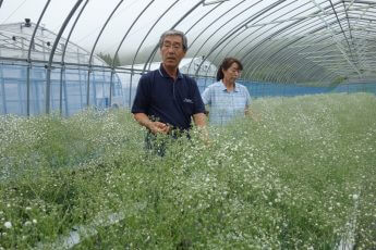 荒れ野の古里に花を咲かせた「飯舘村」の「帰還農家」