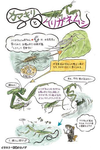 第3回イラスト(イラスト・村林タカノブ)