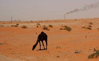 「2040年も8割弱は化石燃料」「再生エネの限界」大前提のエネルギー政策を!